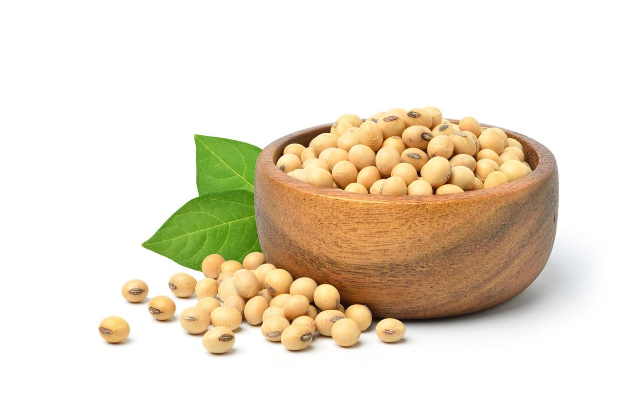 Soybean for hair growth
