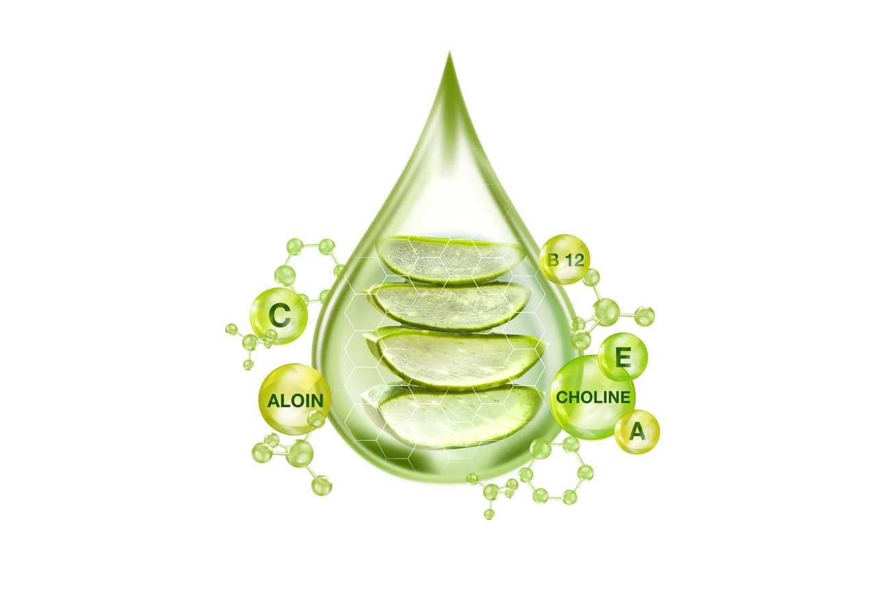 Aloevera- Remedy for Cold Sores