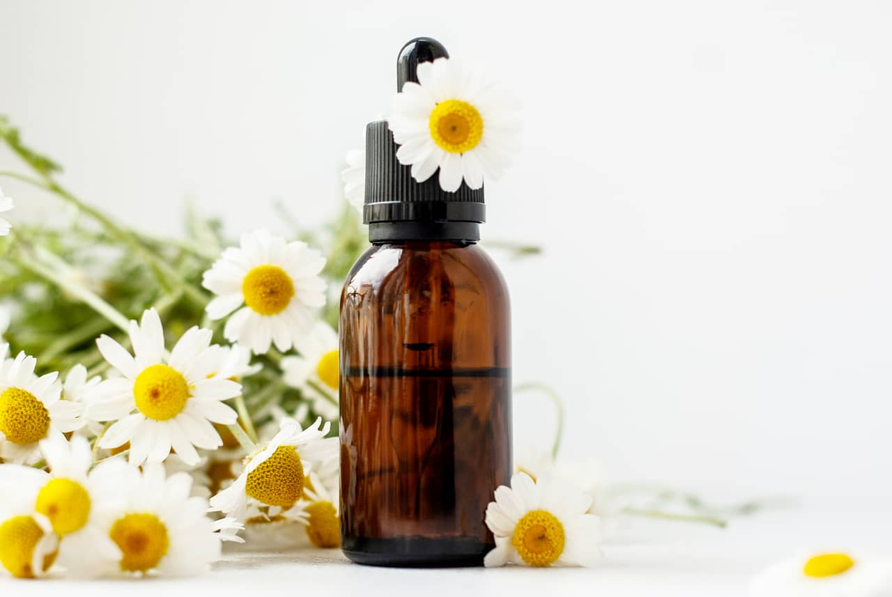 Chamomile- Remedy for Cold Sores