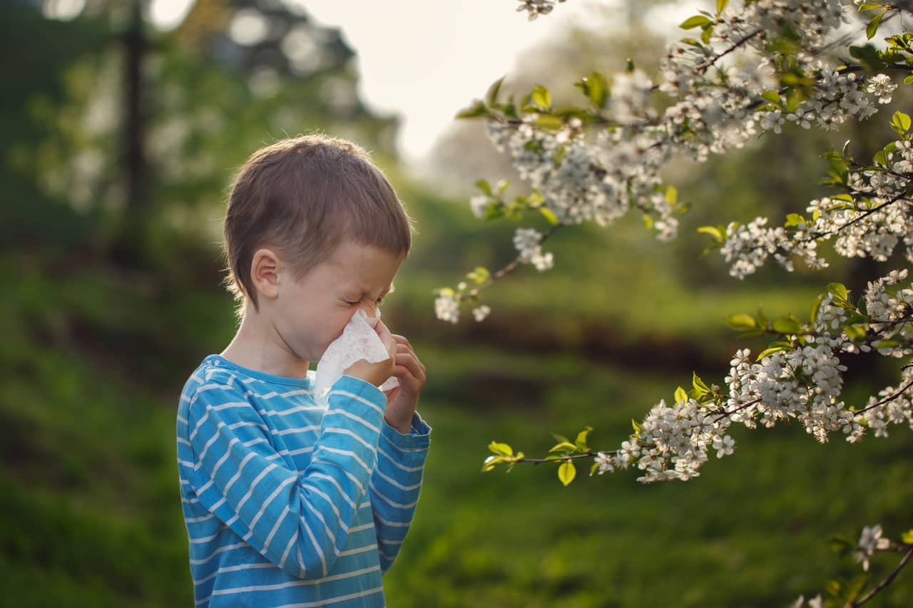 Seasonal allergy and Covid-19